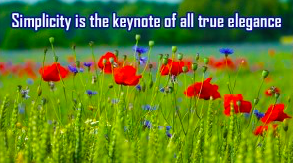 "Red flowers in a field with the text that reads""Simplicity is the keynote to all true elegance"""