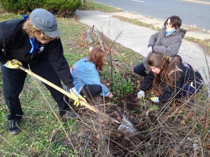teens-helping-in-garden