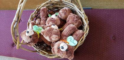 teddy bears nestled in a basket